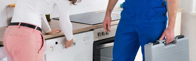 Dishwasher User's and Buying Guide